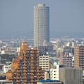写真: 秋の名古屋城 - 21:天守閣最上階からの眺め(ザ・シーン城北)