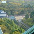 写真: 秋の名古屋城 - 35:天守閣最上階からの眺め