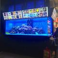 写真: ドンキホーテ名古屋栄店:入口横に水槽! - 1