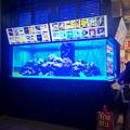 写真: ドンキホーテ名古屋栄店:入口横に水槽! - 3