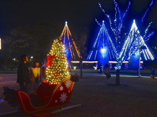 ノリタケの森のクリスマス・イルミネーション 2014 No - 40
