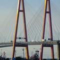 写真: ポートメッセなごやから見た「名港西大橋」 - 4