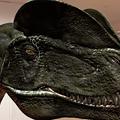 写真: 3Dモデル共有サービス「Sketchfab」公式アプリ - 77:3DモデルをAR!(ディロフォサウルス)