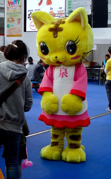 名古屋市消費生活フェア &なごやHppyタウン No - 8:「泉」…と書かれた猫のゆるキャラ