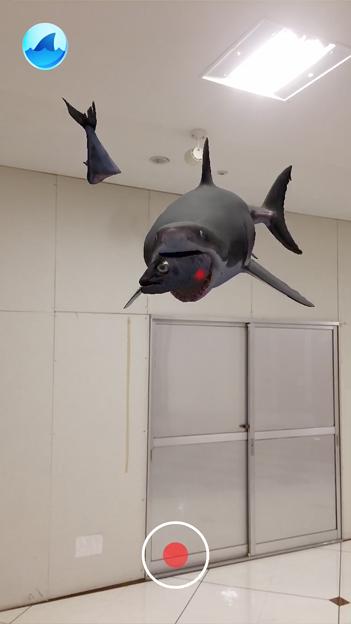 空中を泳ぐリアルなサメをAR表示できる「shARk」:アプリ内課金でホオジロザメを表示 - 18