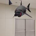 写真: 空中を泳ぐリアルなサメをAR表示できる「shARk」:アプリ内課金でホオジロザメを表示 - 18