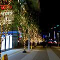 先日始まったばかりの名古屋駅周辺のクリスマス・イルミネーション 2017 No - 2
