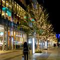 先日始まったばかりの名古屋駅周辺のクリスマス・イルミネーション 2017 No - 4