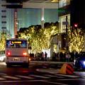 先日始まったばかりの名古屋駅周辺のクリスマス・イルミネーション 2017 No - 5