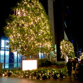 先日始まったばかりの名古屋駅周辺のクリスマス・イルミネーション 2017 No - 8
