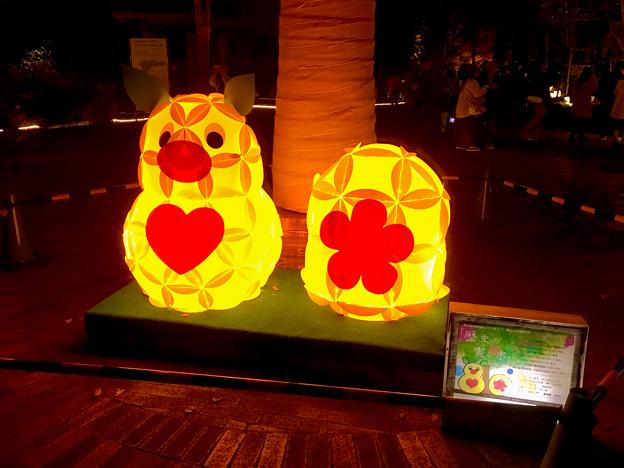 東山動植物園の紅葉ライトアップ 2017 No - 6:ズーボのイルミネーション