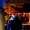 東山動植物園の紅葉ライトアップ 2017 No - 50