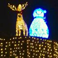 ノリタケの森のクリスマス・イルミネーション 2017 No - 6