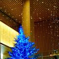 JPタワー名古屋のクリスマスツリー 2017 No - 6