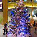 JPタワー名古屋のクリスマスツリー 2017 No - 14