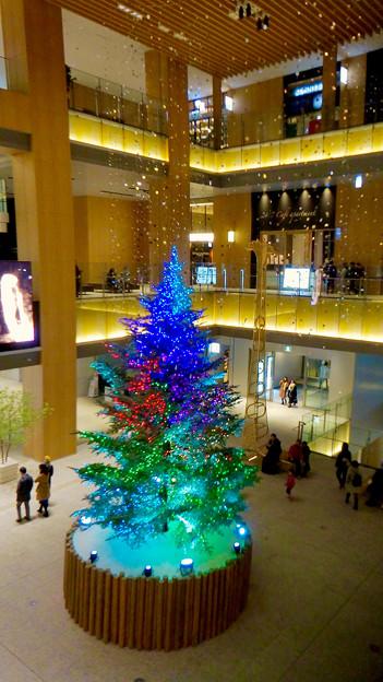 JPタワー名古屋のクリスマスツリー 2017 No - 20