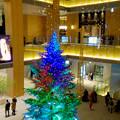 写真: JPタワー名古屋のクリスマスツリー 2017 No - 20