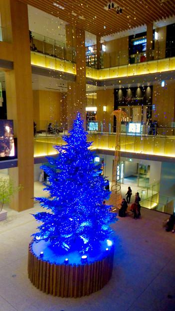 JPタワー名古屋のクリスマスツリー 2017 No - 21