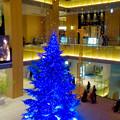 写真: JPタワー名古屋のクリスマスツリー 2017 No - 21
