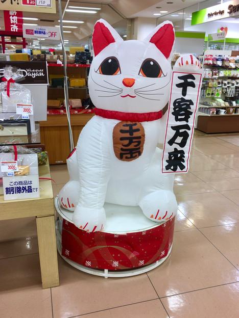 アピタ桃花台店に設置されてた、ちょっと可愛い招き猫
