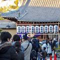 写真: 戌年で賑わう2018年正月の「伊奴(いぬ)神社」 - 23