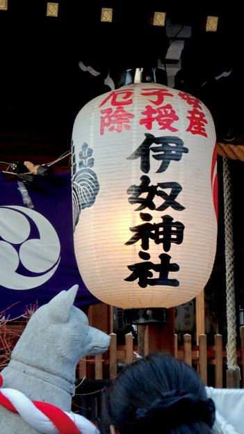 戌年で賑わう2018年正月の「伊奴(いぬ)神社」 - 33:提灯