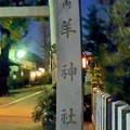 写真: ひっそりとしてた戌年の夜の羊神社 - 8