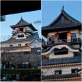 門の前から見上げた犬山城天守閣 - 2