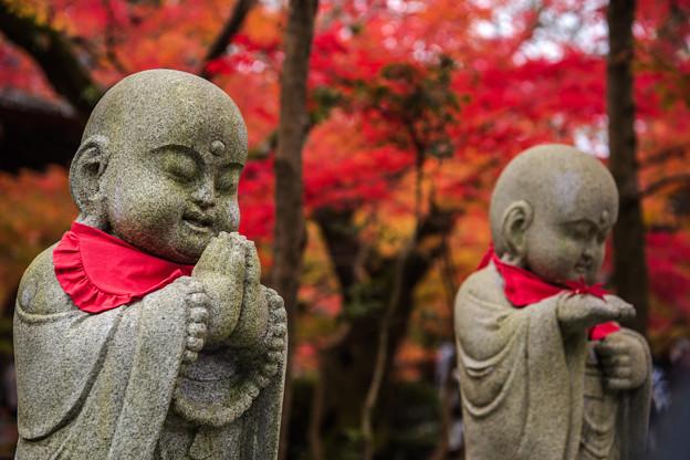 京の秋 1