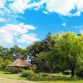 湯築城跡公園