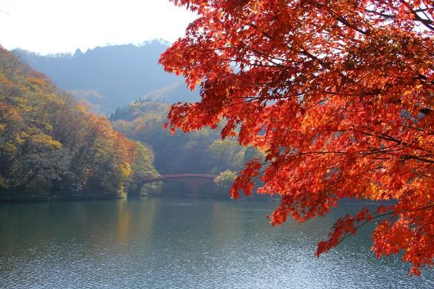 碓氷湖と紅葉