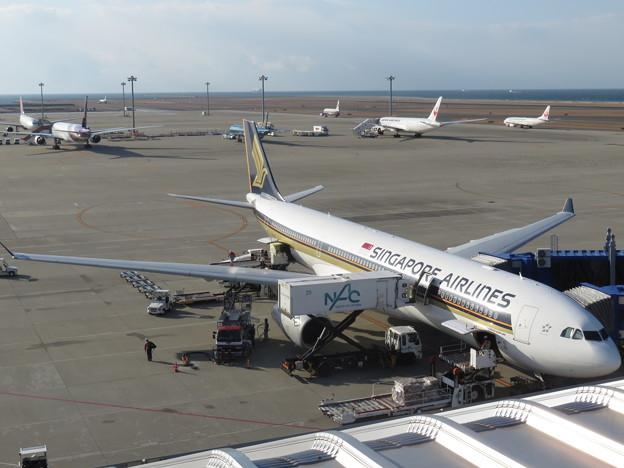 SIA A330-300