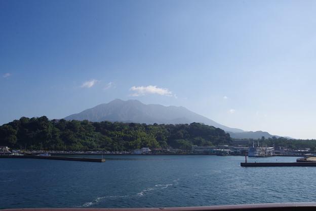 桜島が近くなってまいりました