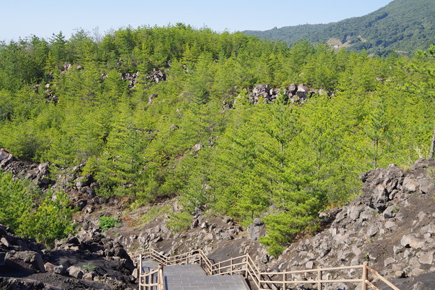 有村溶岩展望台に登ってきました