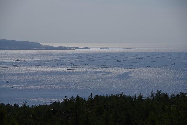 有村溶岩展望所から眺める鹿児島湾