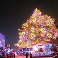 中山競馬場のクリスマスツリー