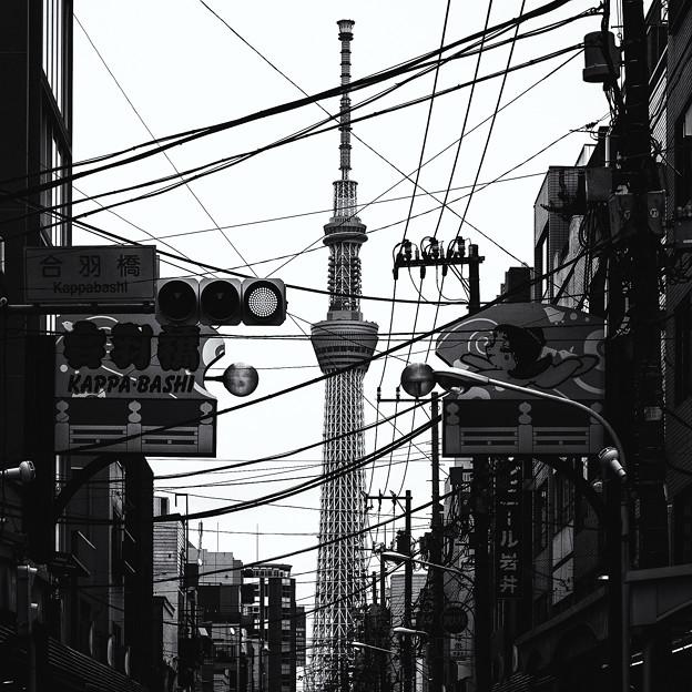 日本之秋#4