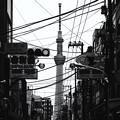 写真: 日本之秋#4