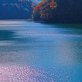 写真: 水殿ダム湖の水面
