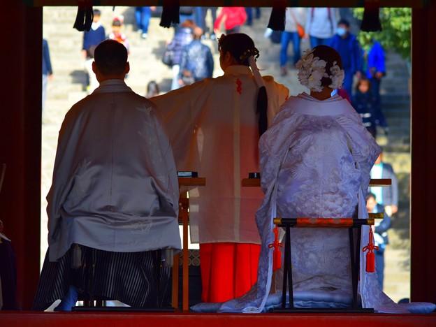 鶴岡八幡宮舞殿の新郎新婦 #湘南 #鎌倉 #kamakura #japan #mysky #神社 #shrine