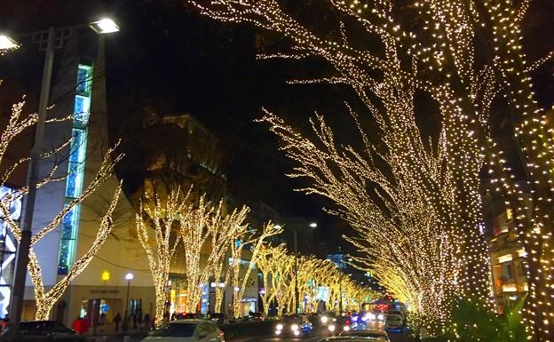 表参道のイルミネーション #表参道 #イルミネーション #東京 #illumination #xmas #omotesando #tokyo