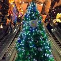 東急プラザのクリスマスツリー #表参道 #イルミネーション #クリスマス #東京 #illumination #xmas #cristmas #omotesando #tokyo