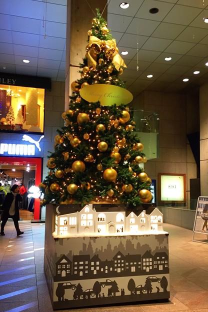 原宿クエストのクリスマスツリー #表参道 #イルミネーション #クリスマス #東京 #illumination #xmas #cristmas #omotesando #tokyo