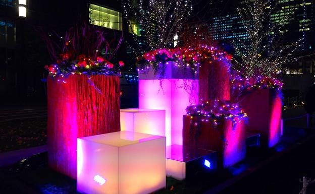 フラワーアートのイルミネーション #東京ミチテラス #イルミネーション #クリスマス #丸の内 #東京駅 #tokyo