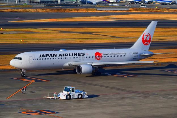 羽田空港の日航機 #haneda #羽田空港 #羽田 #tokyo #airport #日本航空 #jal