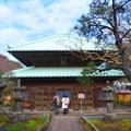 英勝寺 本堂 #鎌倉 #kamakura #湘南 #temple #寺 #mysky