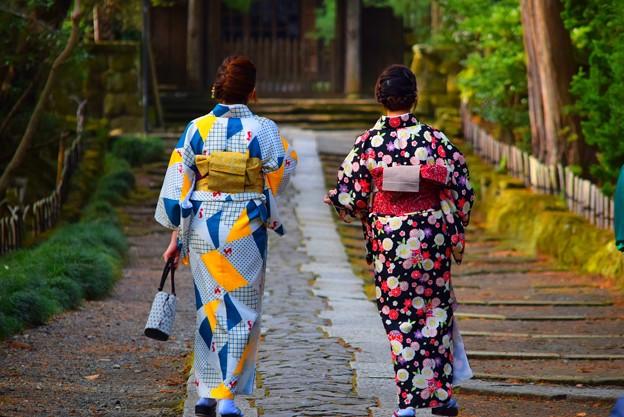鎌倉五山第三位 寿福寺 #鎌倉 #kamakura #湘南 #temple #寺 #mysky #japan