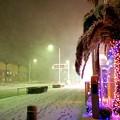猛吹雪の湘南海岸線R134 #湘南 #藤沢 #海 #波 #雪 #snow