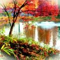 紅湖畔.......