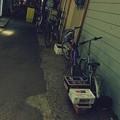 写真: 函館朝市.......